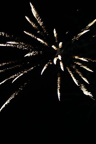 4th of july 048